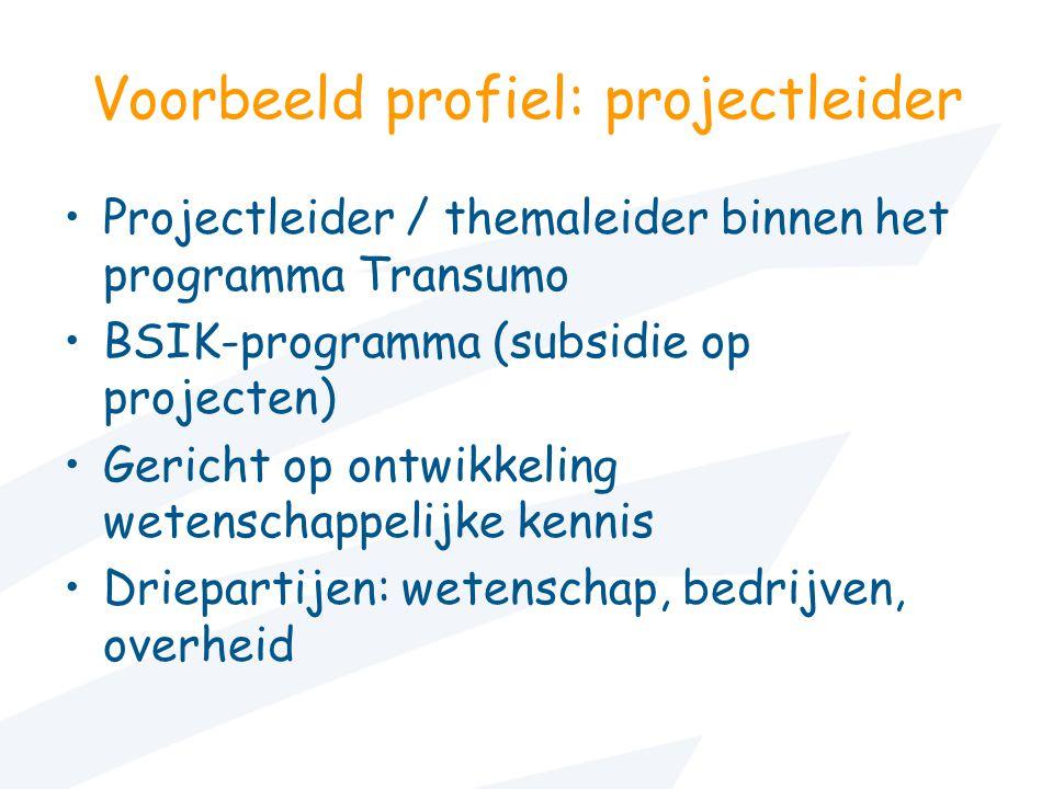 Voorbeeld profiel: projectleider