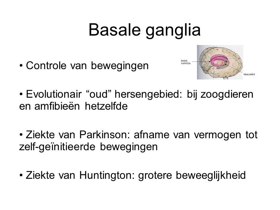 Basale ganglia Controle van bewegingen