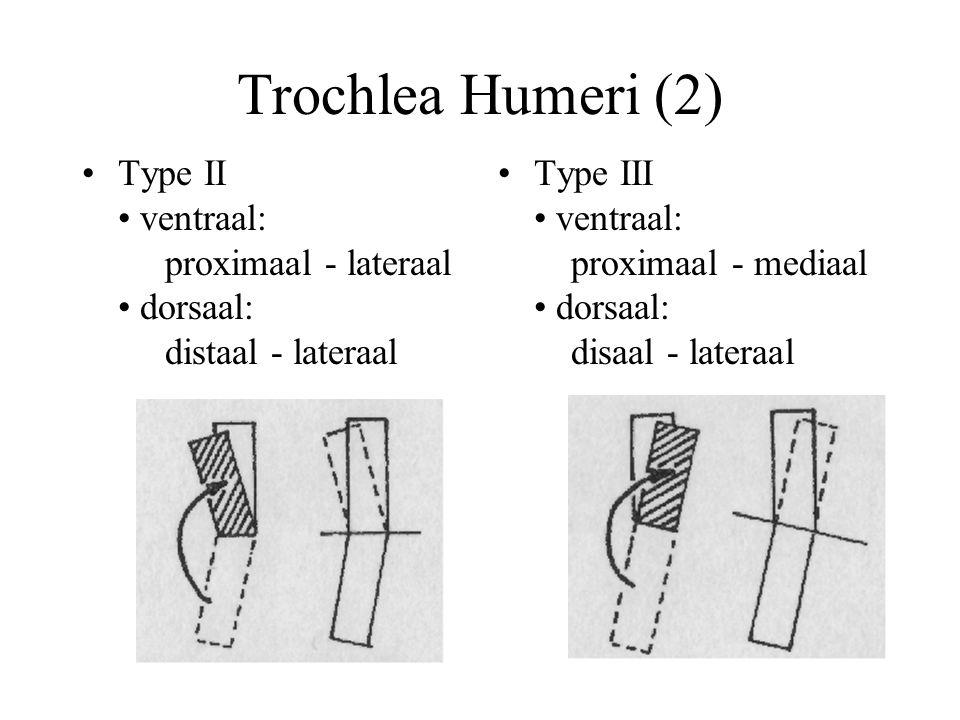 Trochlea Humeri (2) Type II • ventraal: proximaal - lateraal • dorsaal: distaal - lateraal.