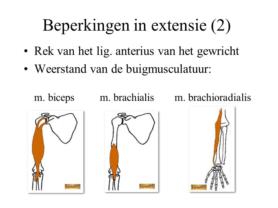 Beperkingen in extensie (2)