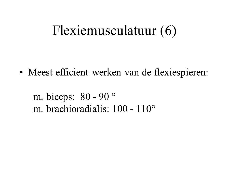 Flexiemusculatuur (6) Meest efficient werken van de flexiespieren: m.