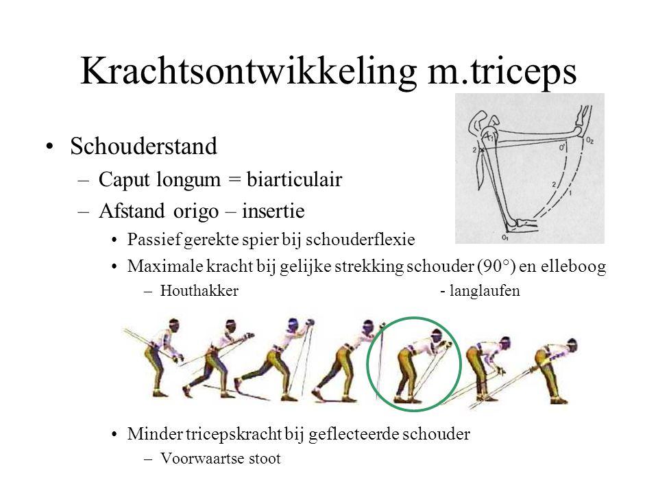 Krachtsontwikkeling m.triceps
