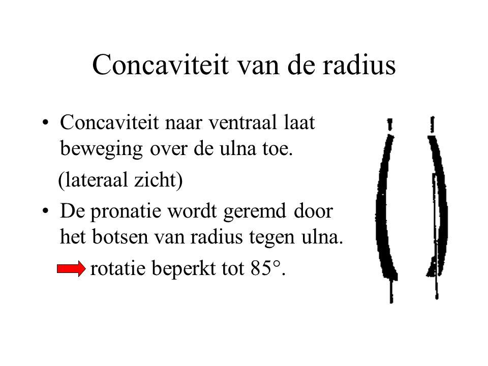 Concaviteit van de radius