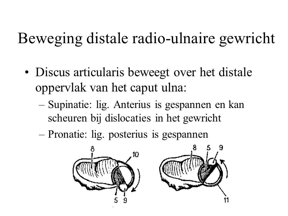 Beweging distale radio-ulnaire gewricht