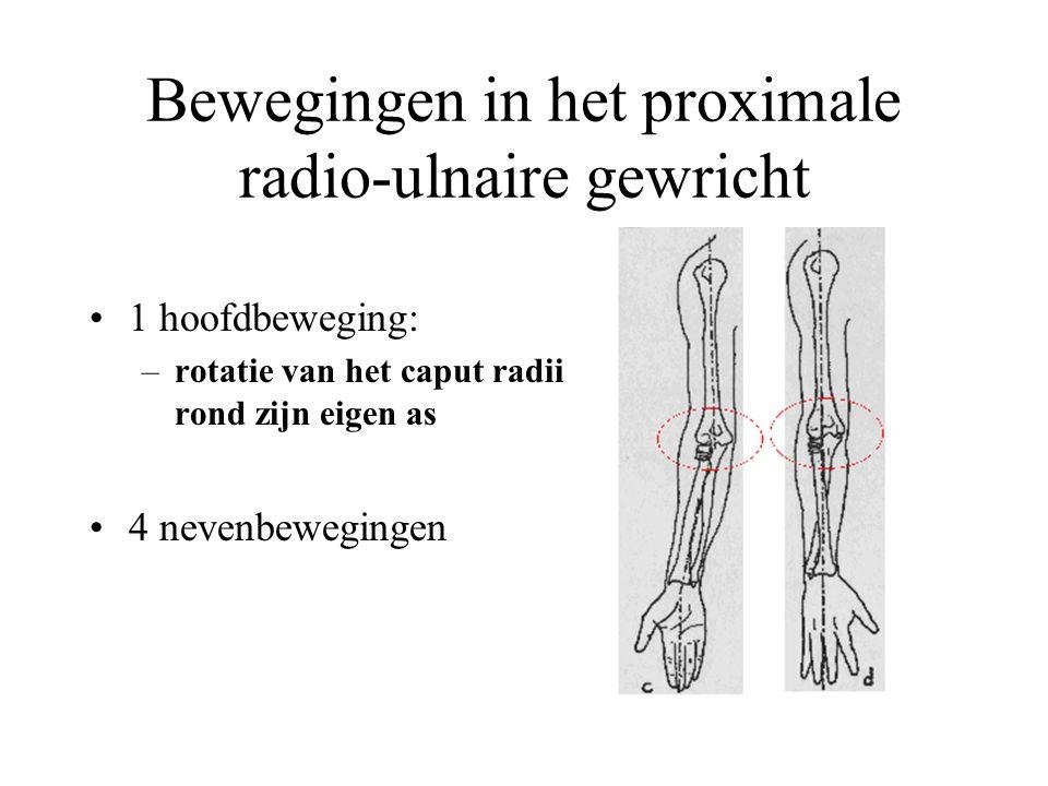 Bewegingen in het proximale radio-ulnaire gewricht