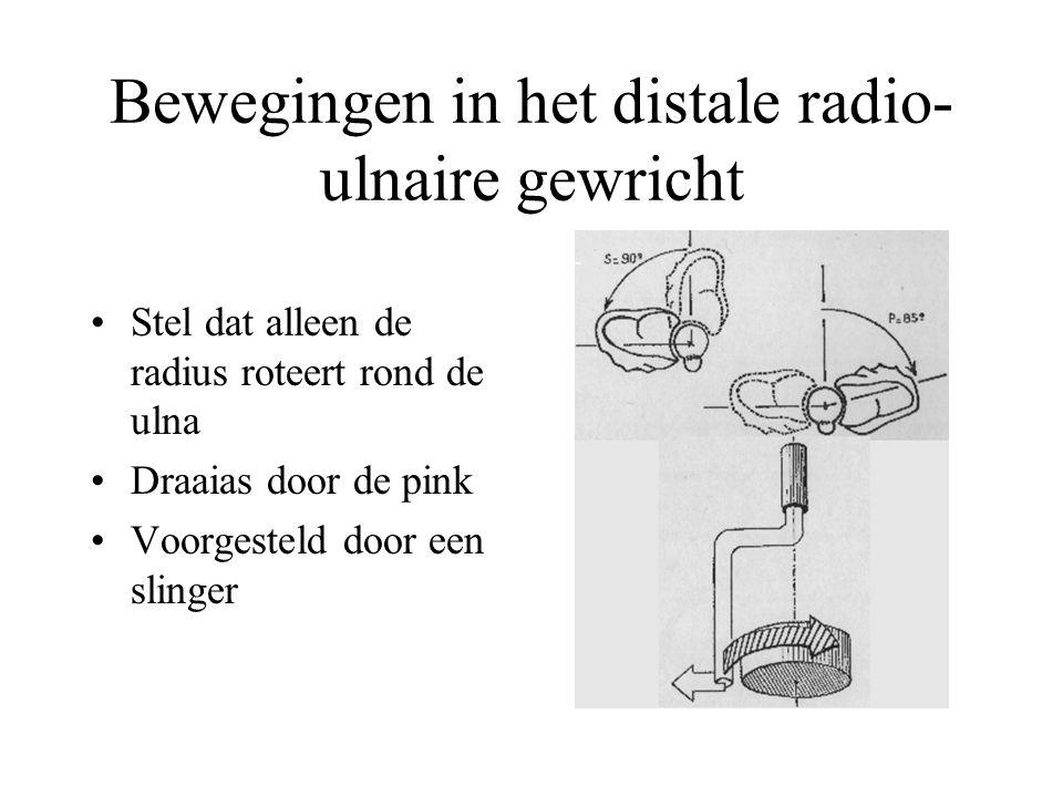 Bewegingen in het distale radio-ulnaire gewricht