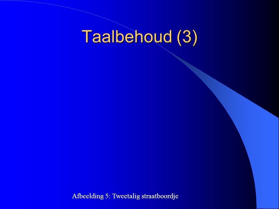 Taalbehoud (3) Afbeelding 5: Tweetalig straatboordje