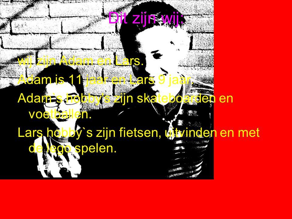Dit zijn wij: wij zijn Adam en Lars. Adam is 11 jaar en Lars 9 jaar.
