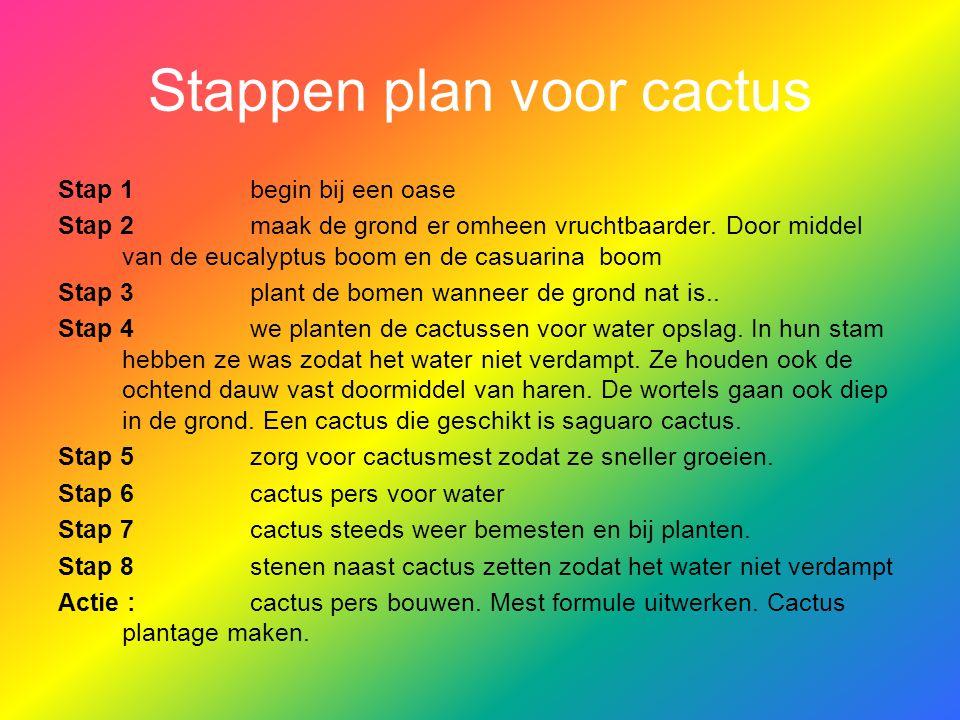 Stappen plan voor cactus