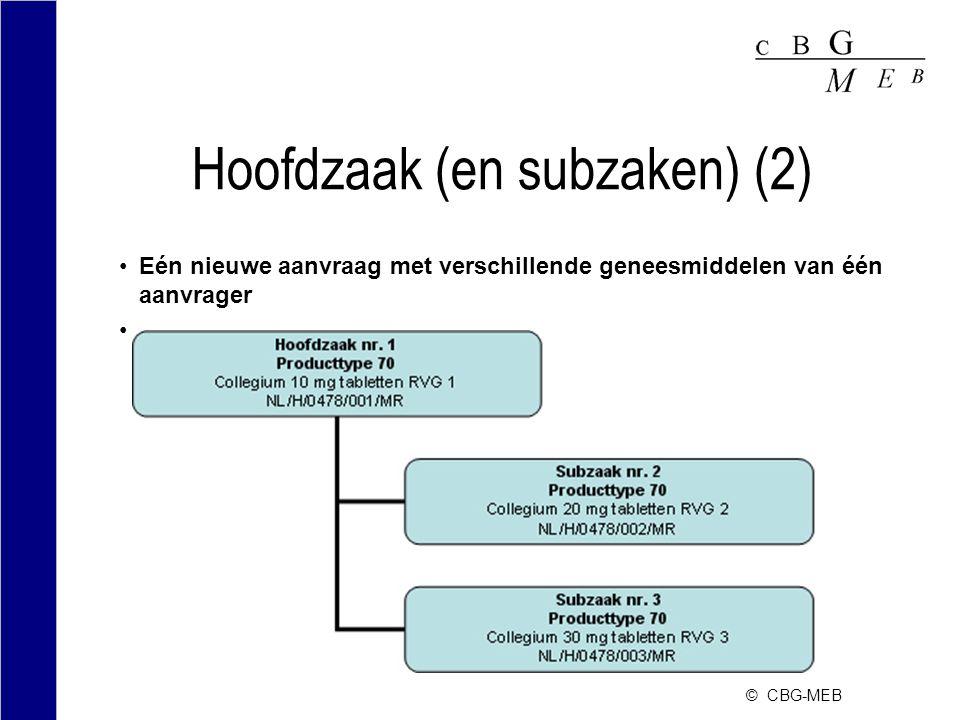 Hoofdzaak (en subzaken) (2)