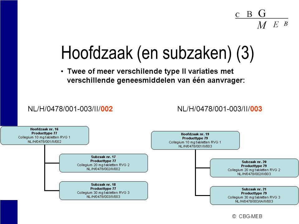 Hoofdzaak (en subzaken) (3)