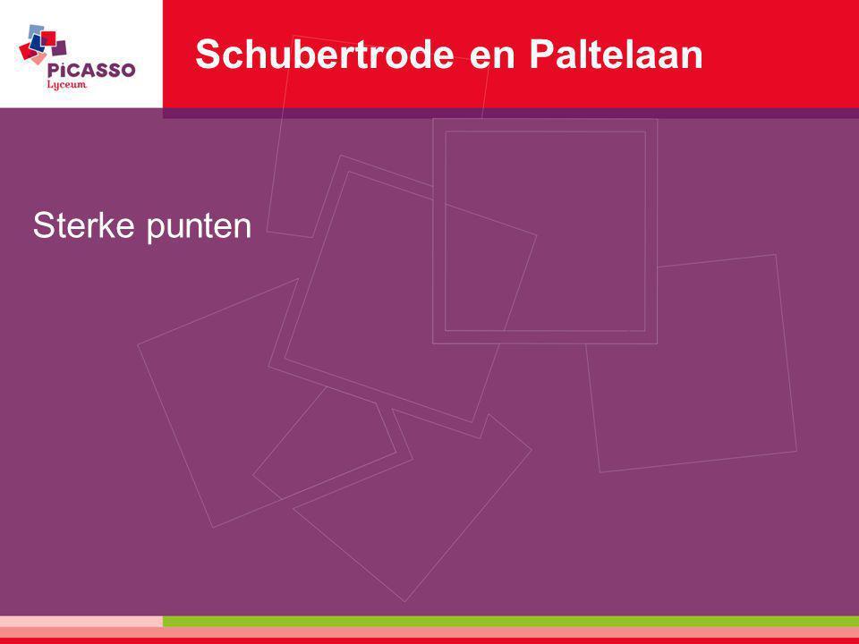 Schubertrode en Paltelaan