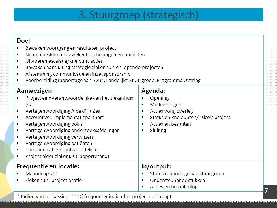 3. Stuurgroep (strategisch)