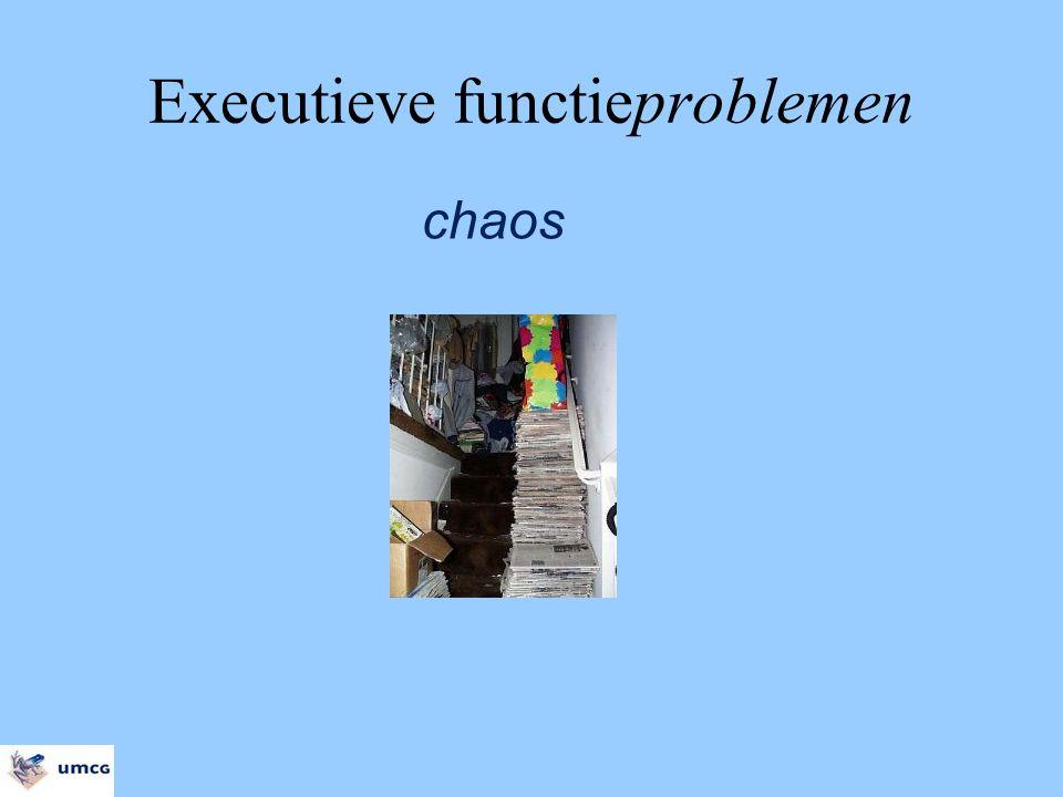 Executieve functieproblemen