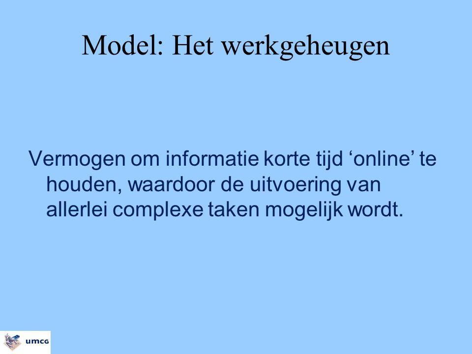 Model: Het werkgeheugen