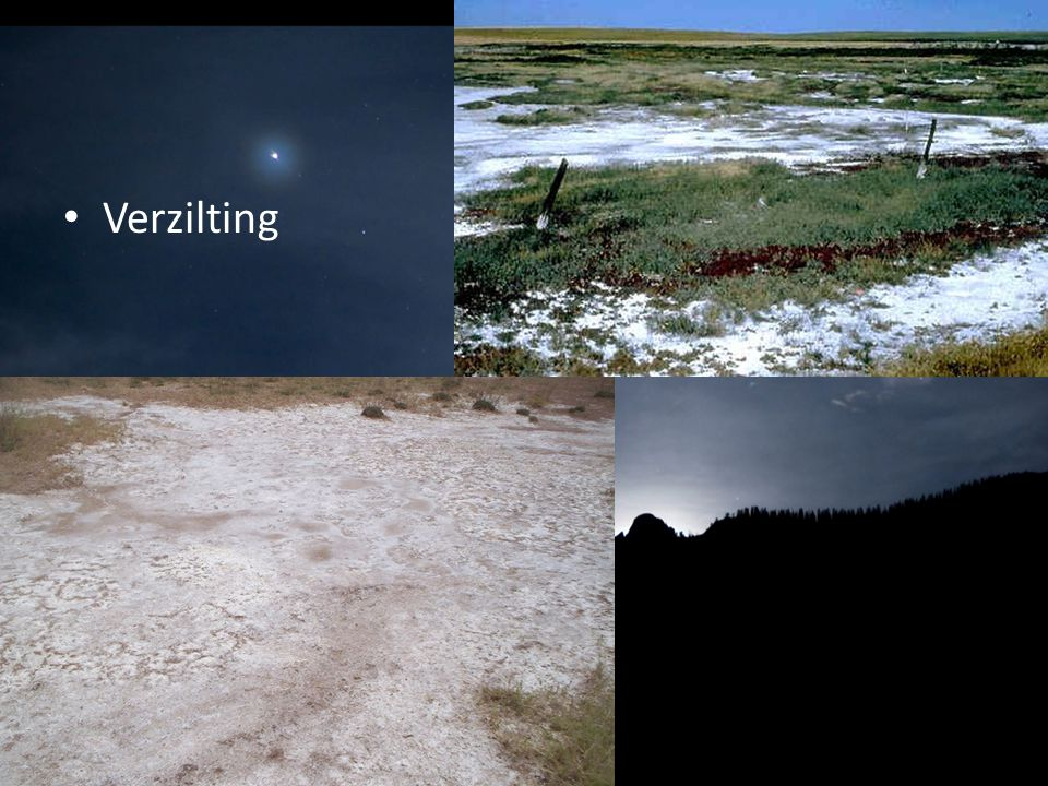 Verzilting