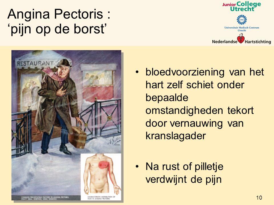Angina Pectoris : 'pijn op de borst'