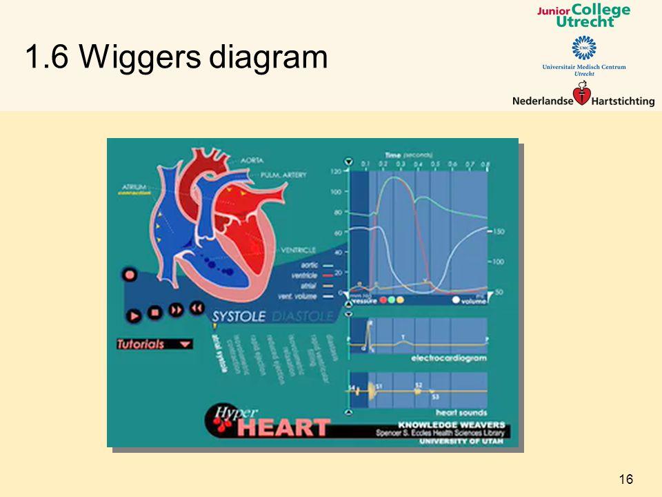 1.6 Wiggers diagram