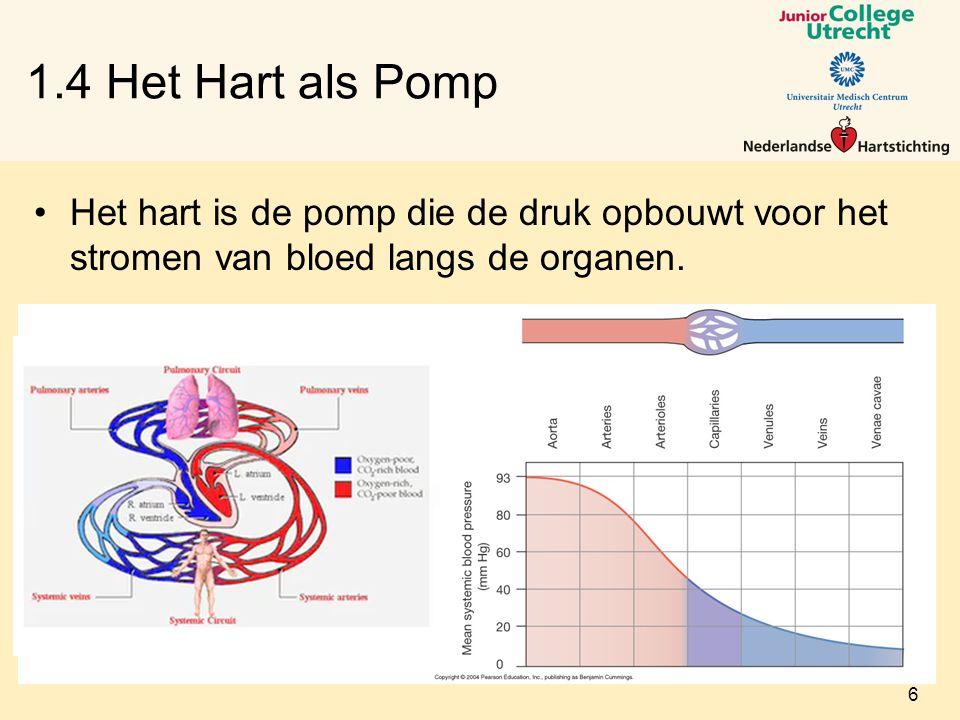 1.4 Het Hart als Pomp Het hart is de pomp die de druk opbouwt voor het stromen van bloed langs de organen.