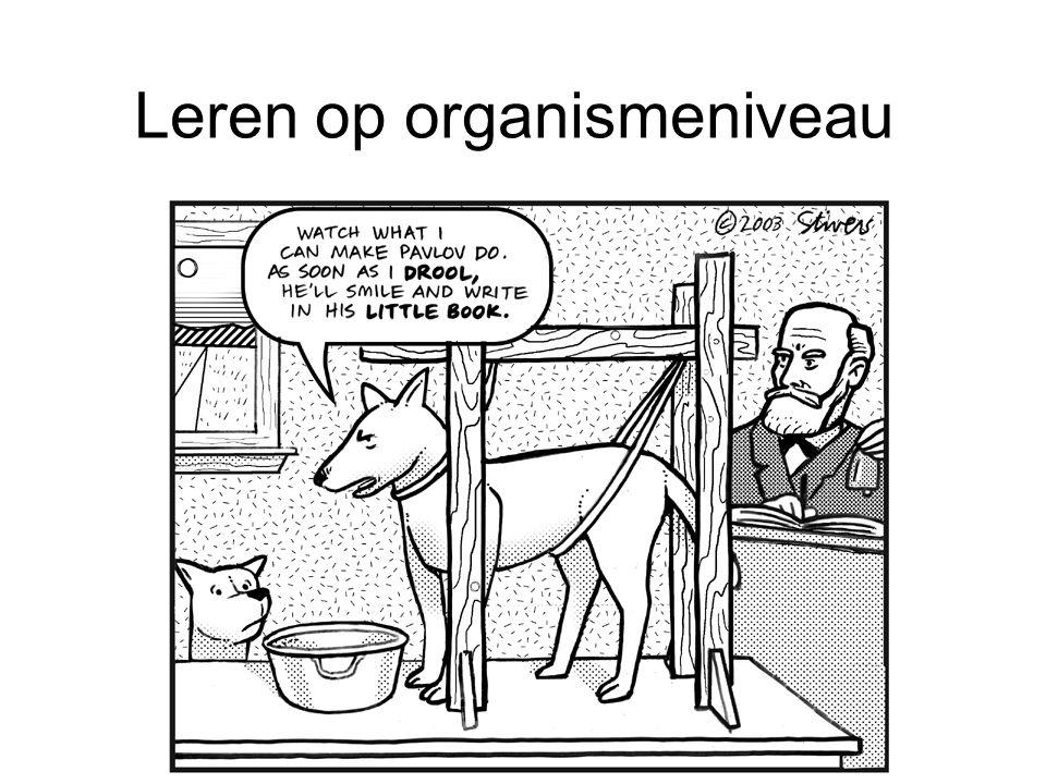 Leren op organismeniveau