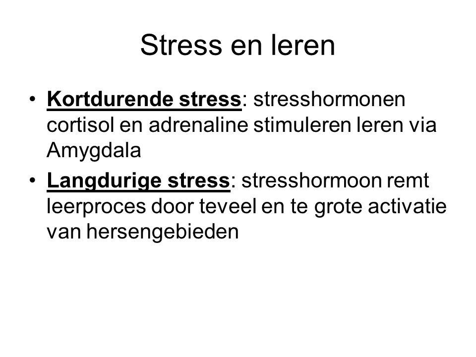 Stress en leren Kortdurende stress: stresshormonen cortisol en adrenaline stimuleren leren via Amygdala.