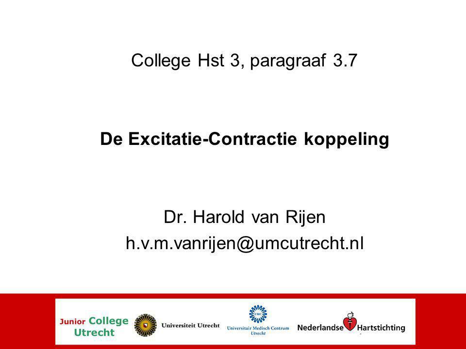 De Excitatie-Contractie koppeling