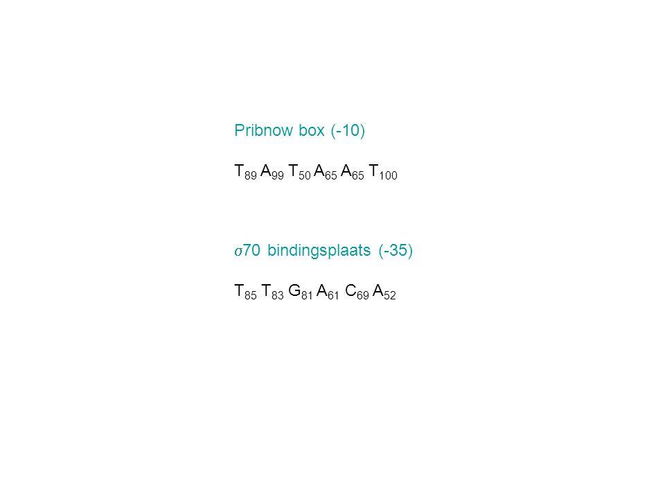 Pribnow box (-10) T89 A99 T50 A65 A65 T100 s70 bindingsplaats (-35) T85 T83 G81 A61 C69 A52