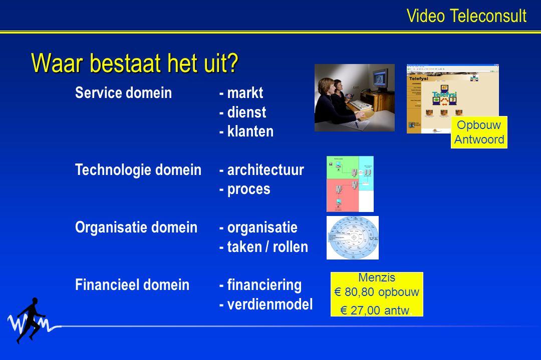 Waar bestaat het uit Video Teleconsult Service domein - markt