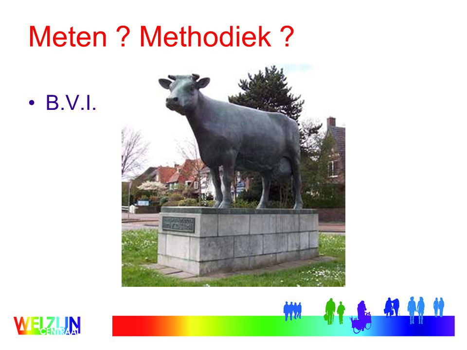 Meten Methodiek B.V.I.