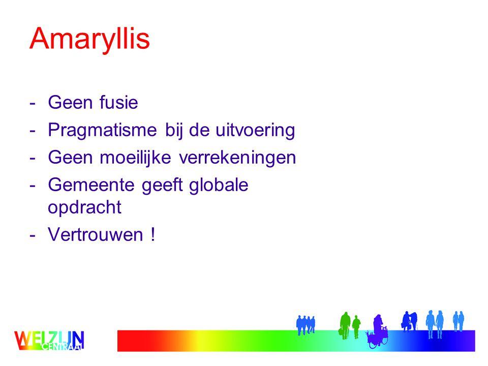 Amaryllis Geen fusie Pragmatisme bij de uitvoering