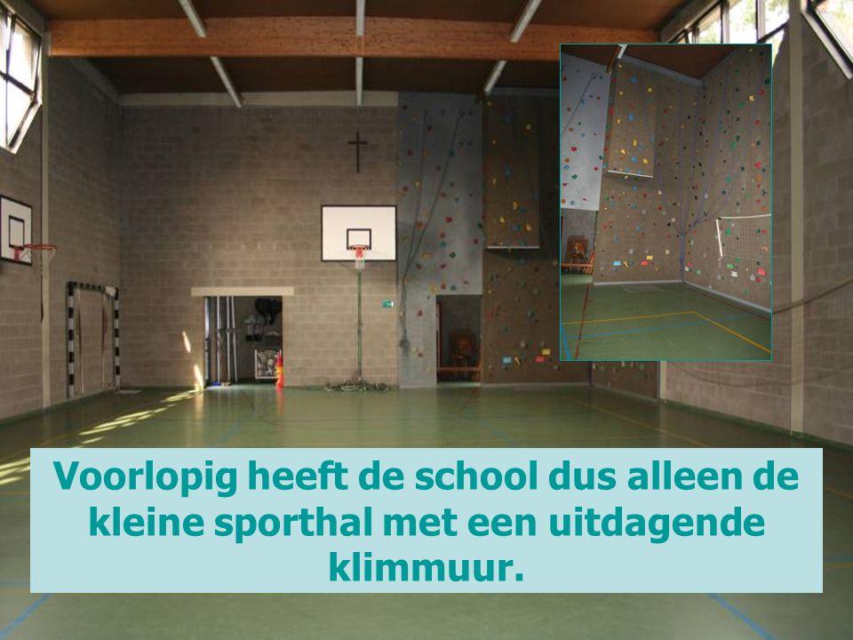 Voorlopig heeft de school dus alleen de kleine sporthal met een uitdagende klimmuur.