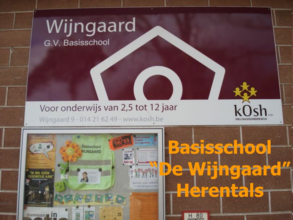 Basisschool De Wijngaard Herentals