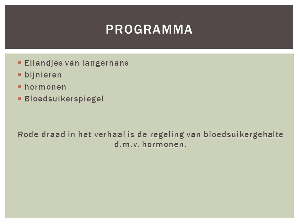 programma Eilandjes van langerhans bijnieren hormonen