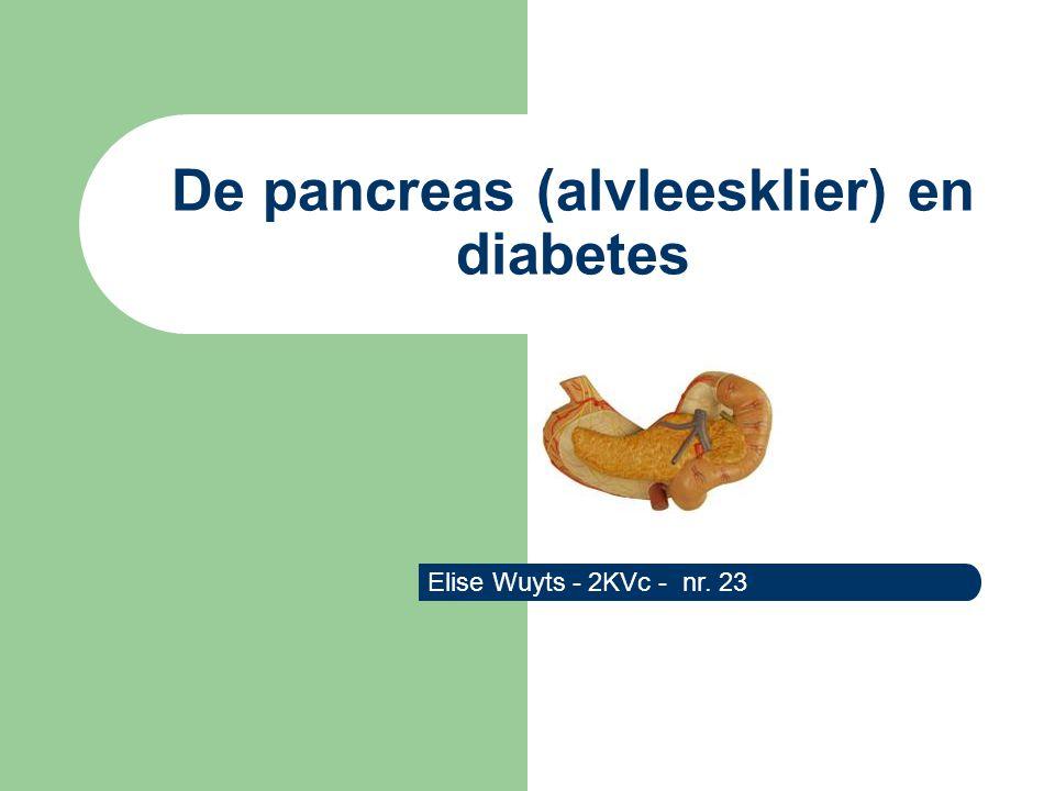 De pancreas (alvleesklier) en diabetes