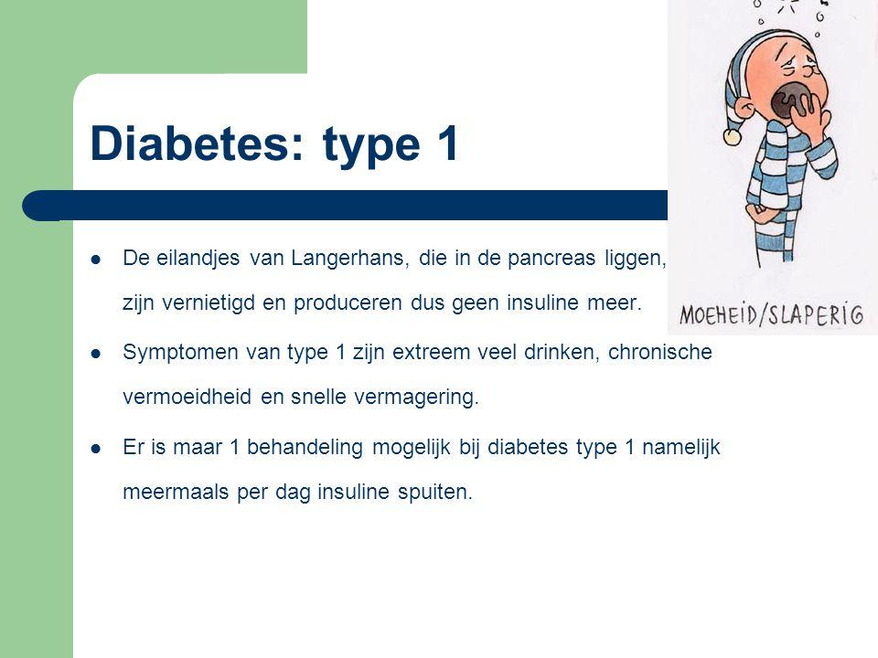 Diabetes: type 1 De eilandjes van Langerhans, die in de pancreas liggen, zijn vernietigd en produceren dus geen insuline meer.