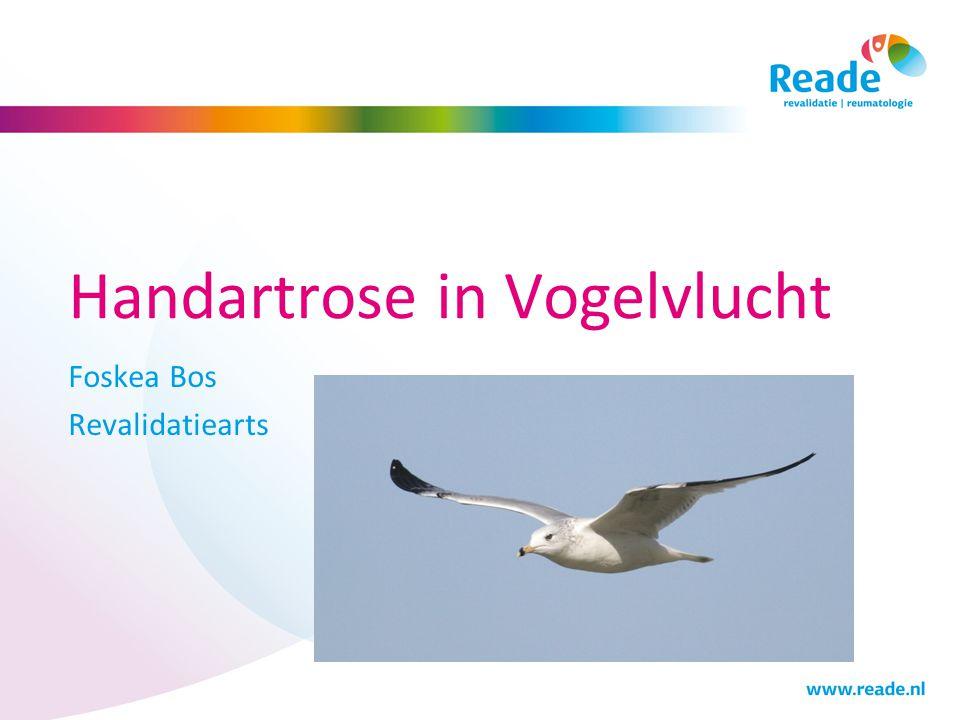 Handartrose in Vogelvlucht