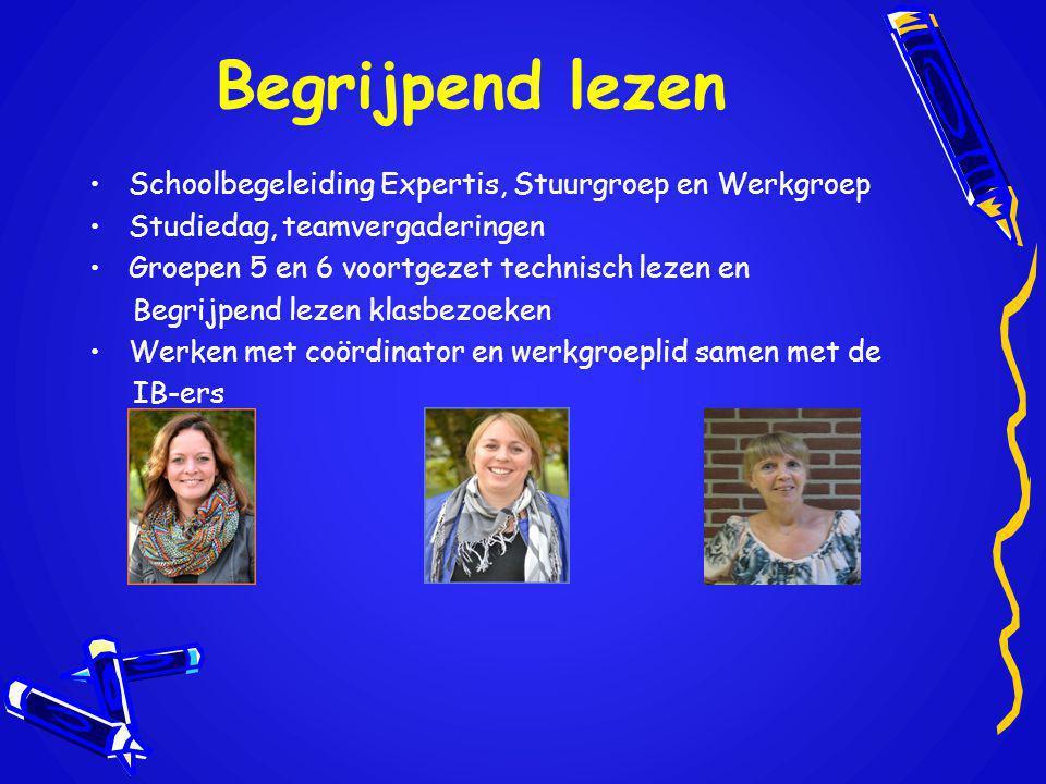 Begrijpend lezen Schoolbegeleiding Expertis, Stuurgroep en Werkgroep