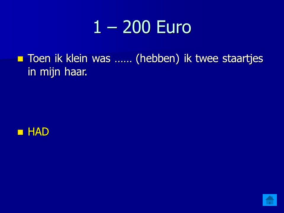 1 – 200 Euro Toen ik klein was …… (hebben) ik twee staartjes in mijn haar. HAD