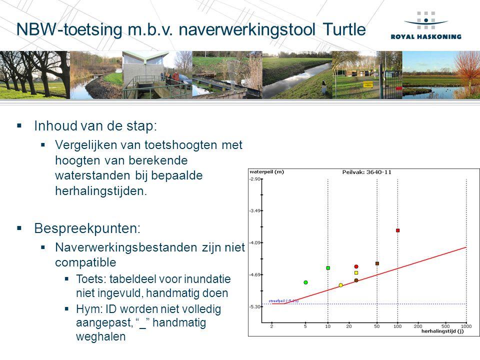 NBW-toetsing m.b.v. naverwerkingstool Turtle