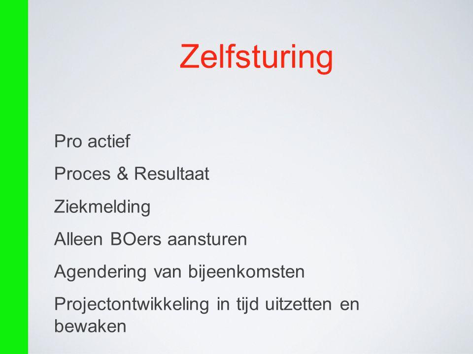 Zelfsturing Pro actief Proces & Resultaat Ziekmelding
