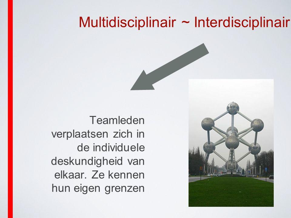 Multidisciplinair ~ Interdisciplinair