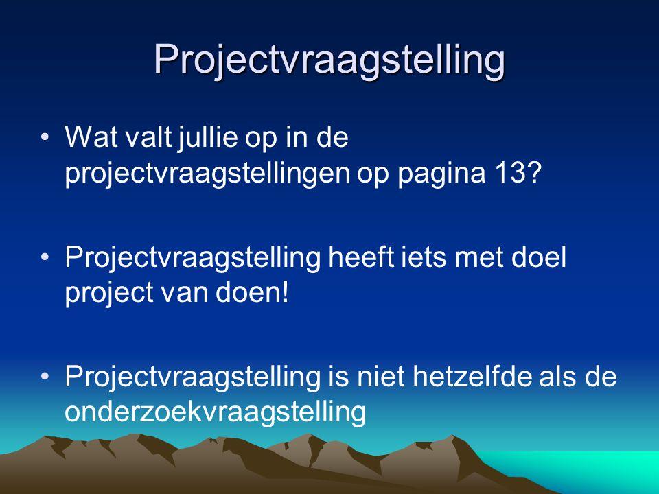 Projectvraagstelling