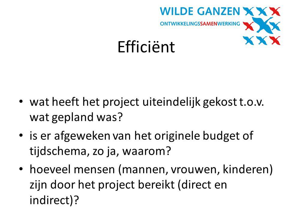 Efficiënt wat heeft het project uiteindelijk gekost t.o.v. wat gepland was is er afgeweken van het originele budget of tijdschema, zo ja, waarom