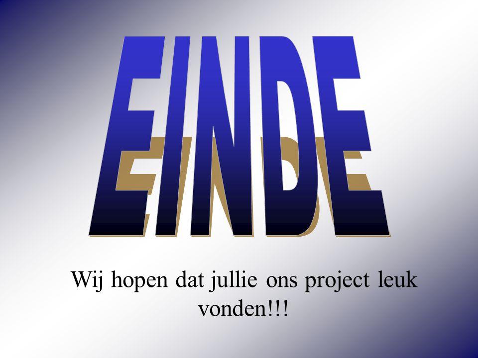 Wij hopen dat jullie ons project leuk vonden!!!