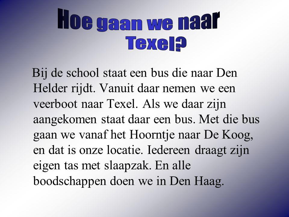 Hoe gaan we naar Texel