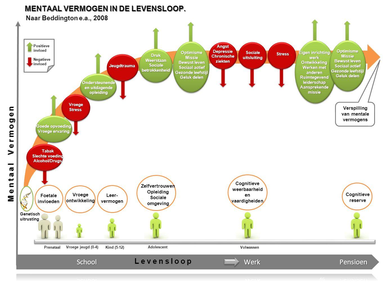 MENTAAL VERMOGEN IN DE LEVENSLOOP.
