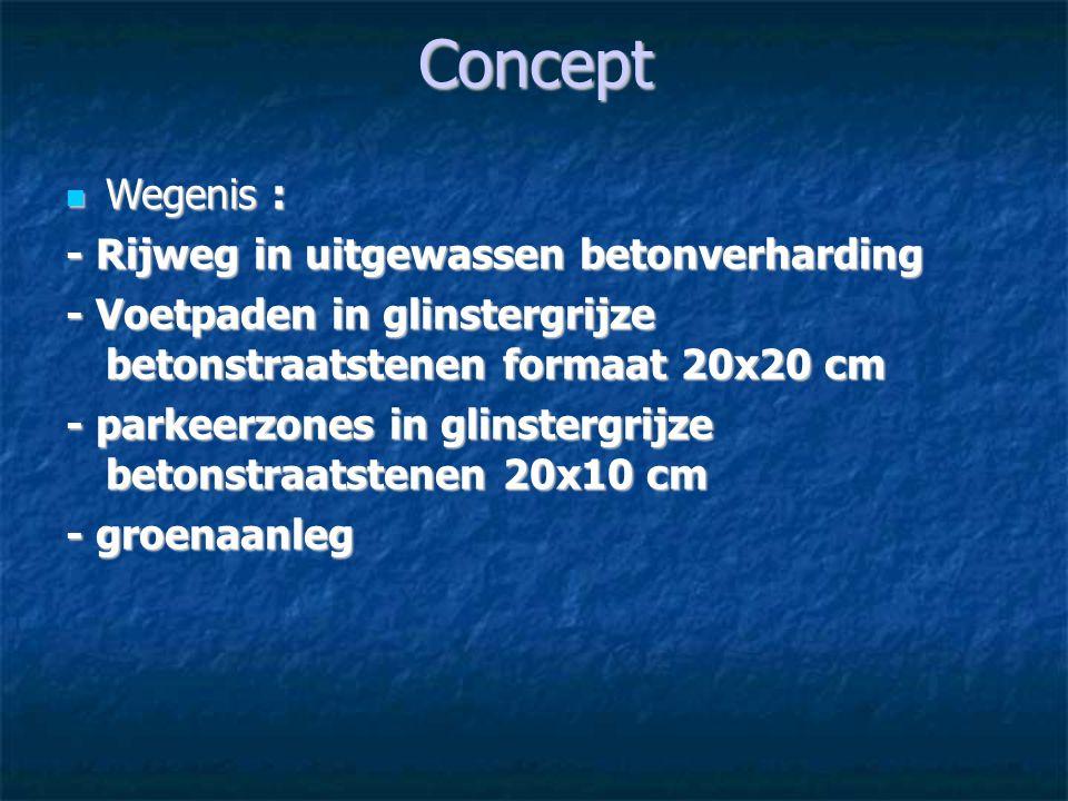 Concept Wegenis : - Rijweg in uitgewassen betonverharding