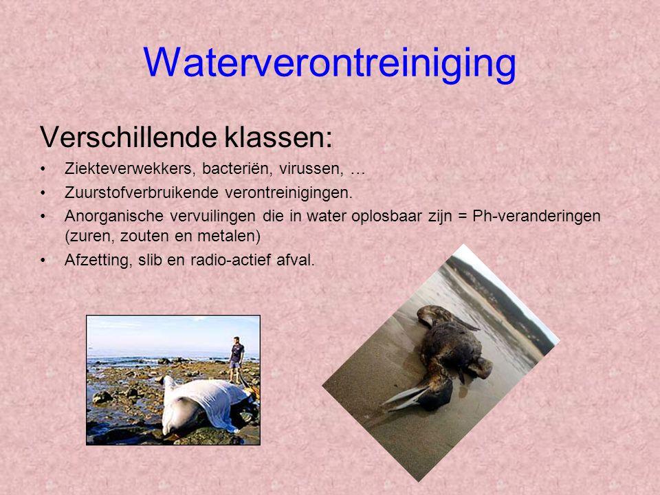 Waterverontreiniging