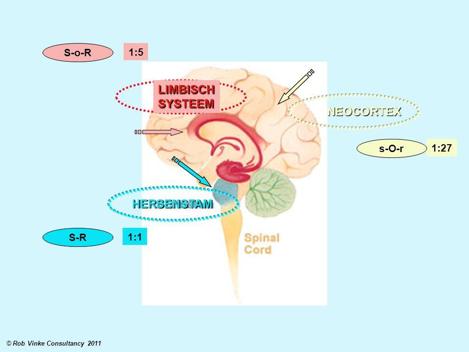 LIMBISCH SYSTEEM NEOCORTEX HERSENSTAM S-o-R 1:5 s-O-r 1:27 S-R 1:1