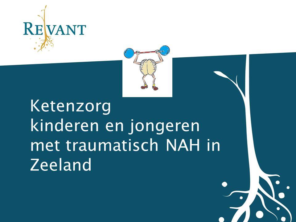 Ketenzorg kinderen en jongeren met traumatisch NAH in Zeeland